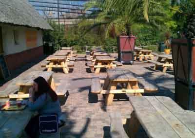 Boomstam picknickbank dierentuin