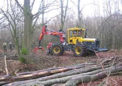 Slepen van boomstammen