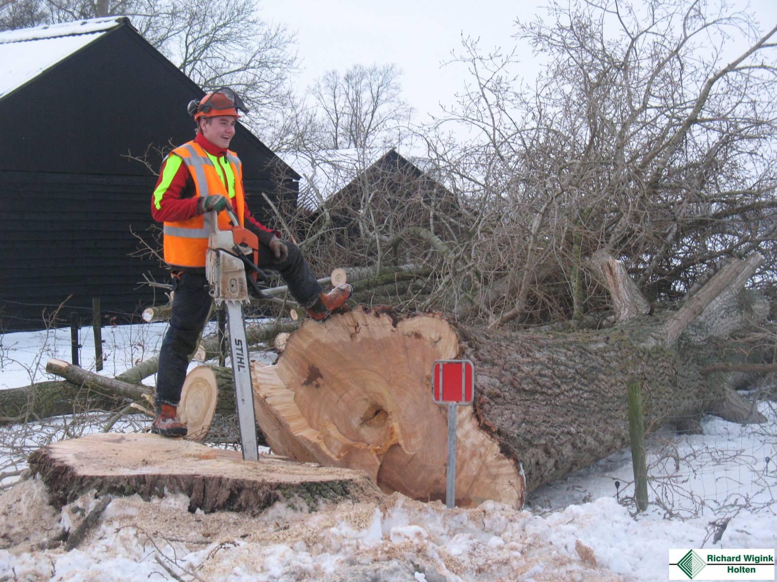 Bosbouwbedrijf