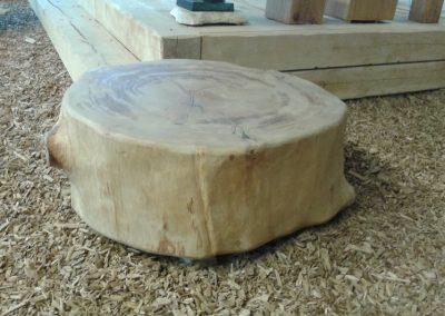 Originele boomstamschijf uit duurzaam beheerde bossen 1