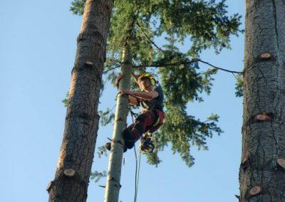 vellen d.m.v. klimmen