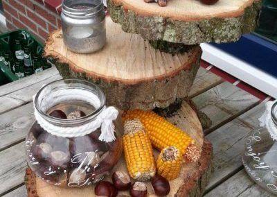 Originele boomstamschijf uit duurzaam beheerde bossen 2